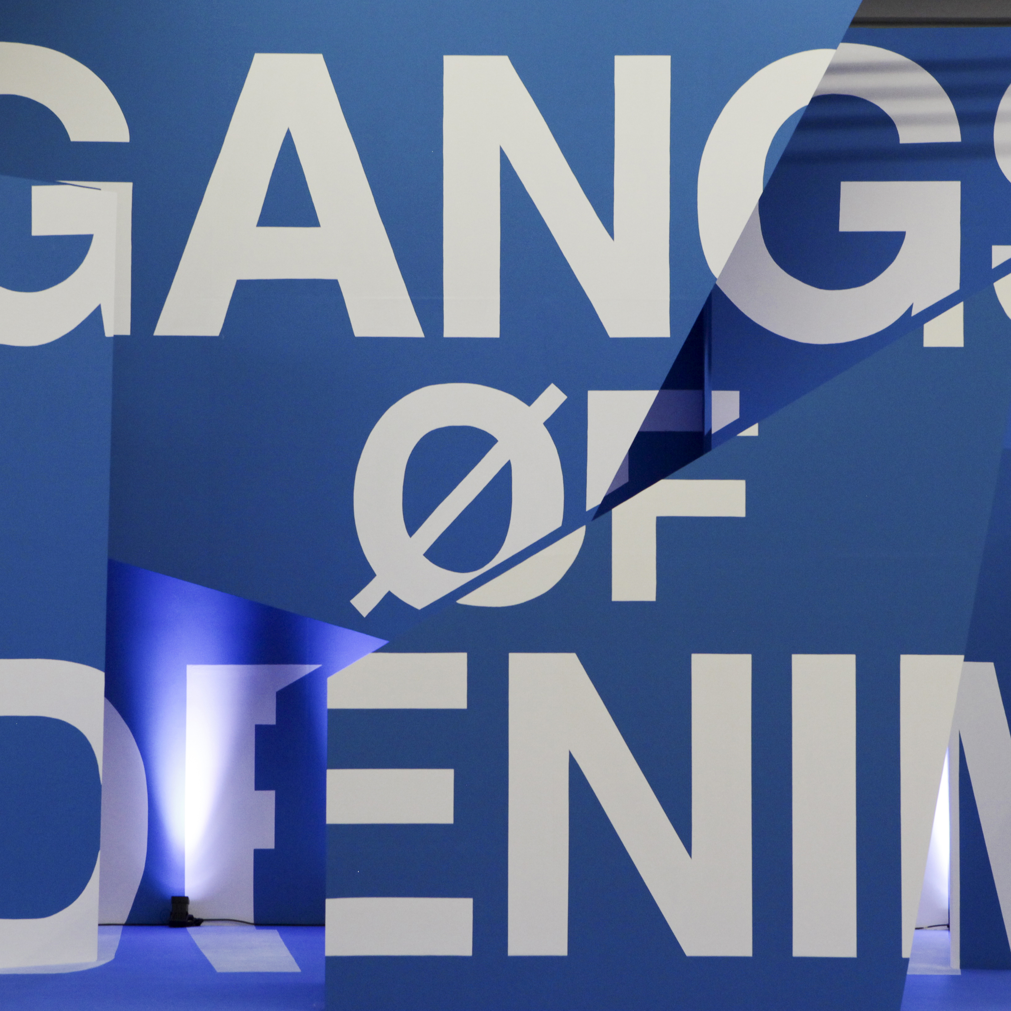 Gangs Of Denim